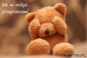 tak_mi_wstyd_przepraszam_0